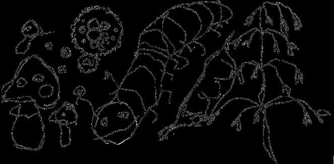 cropped-ilkka-logo2.png