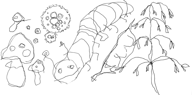 ilkka logo2